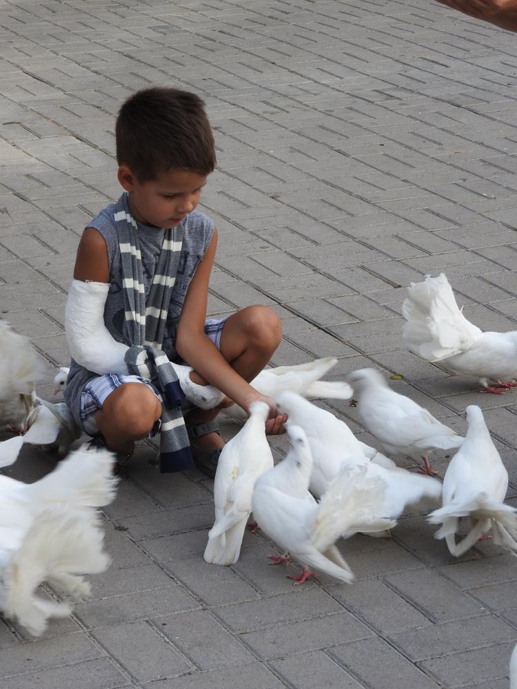 Максим и голуби