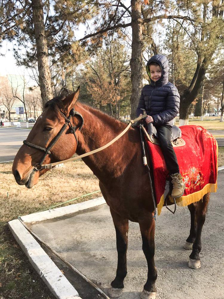 Максим на лошади-2
